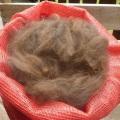 Alpakarohwolle, Farbe: Mittelbraun